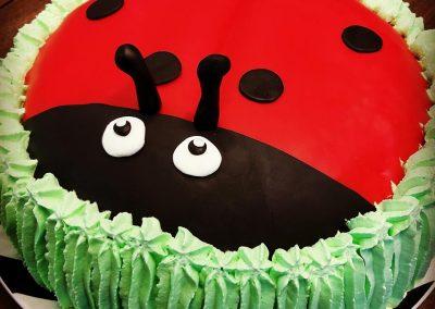 leppis-kakku